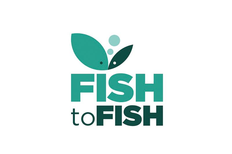 fish2fish